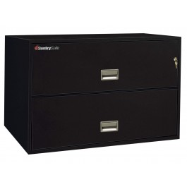 2L4300 Sentry FIre File - black