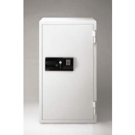 S8771 Sentry Commercial Fire Safe