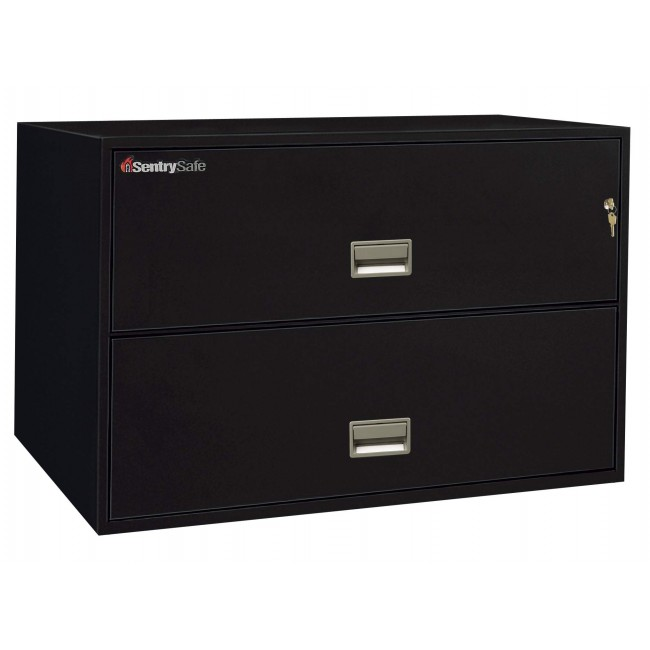2L4300 Sentry FIre File   Black